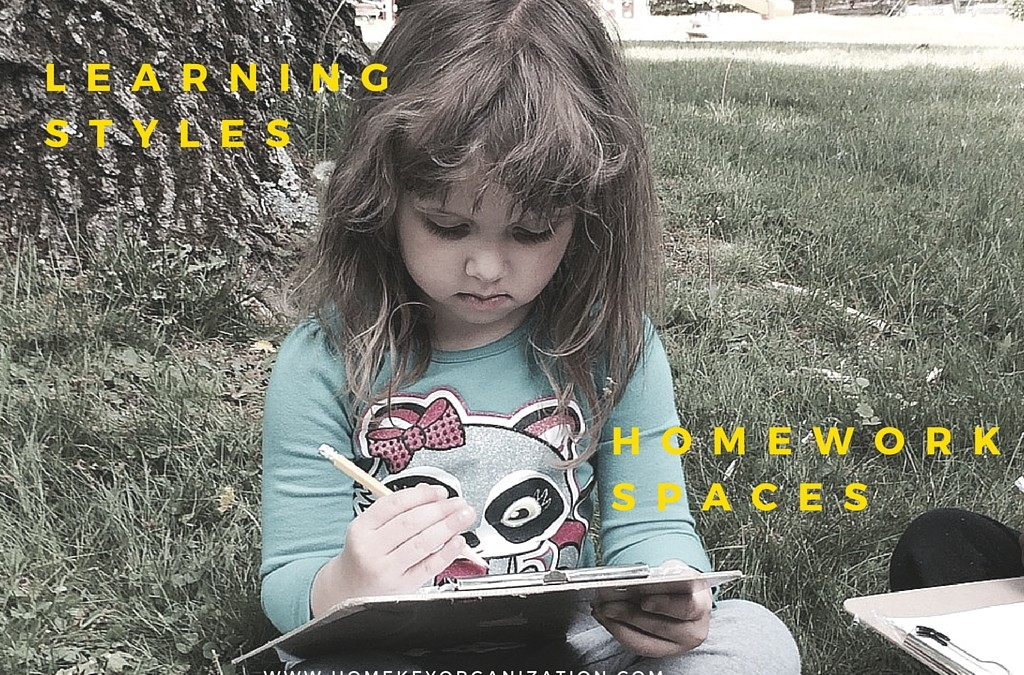 Learning Styles and Homework Spaces