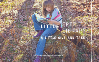 Little Free Libraries – A Little Give and Take