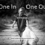 One in One Out with Kids. Home Key Organization in Seattle
