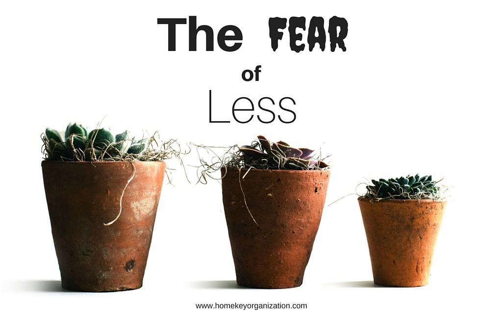 The Fear of Less