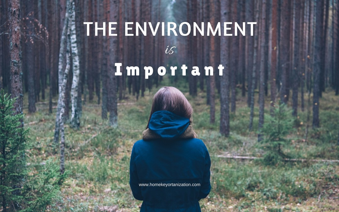 The Environment Is Important